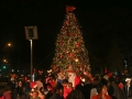 Christmas-Under-the-Stars-4